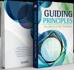 guiding principles 2